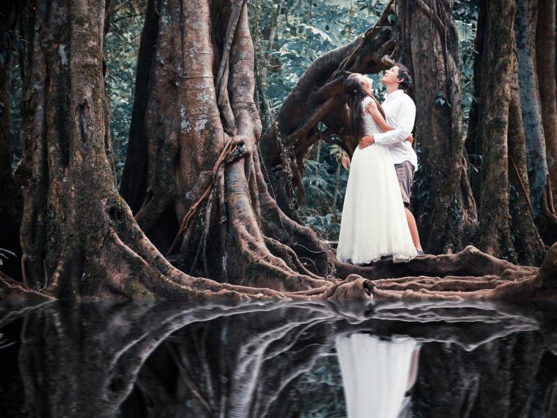 elopement foret mangrove réunion